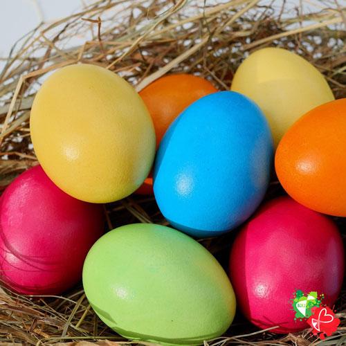 Das neue Leben – oder wie das Ei zum Osterei wurde